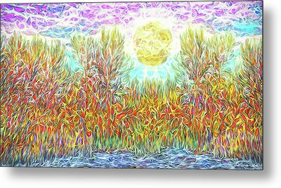 Metal Print featuring the digital art Swirling Brilliant Trees - Boulder County Colorado by Joel Bruce Wallach