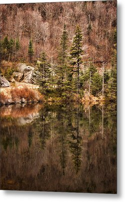 Symmetry Metal Print by Heather Applegate