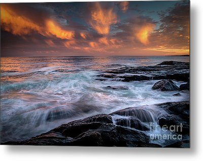 Symphony Metal Print by Scott Thorp