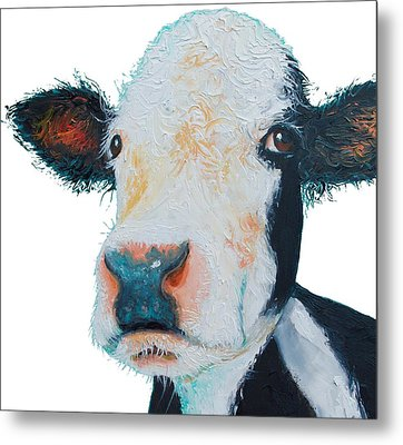 T-shirt With Cow Design Metal Print by Jan Matson