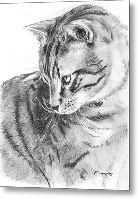 Tabby Cat In Profile Drawing Metal Print