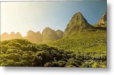 Table Mountain National Park Metal Print by Tim Hester