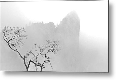 Taft Point In Mist Metal Print