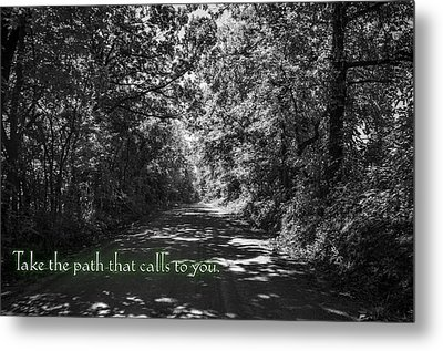 Take The Path That Calls To You Metal Print by Eric Benjamin
