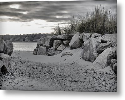 Taking A Walk At Fogland Metal Print