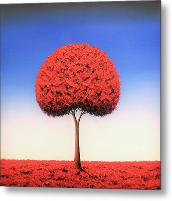 Taking The Day Metal Print by Rachel Bingaman