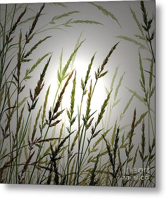 Metal Print featuring the digital art Tall Grass And Sunlight by James Williamson