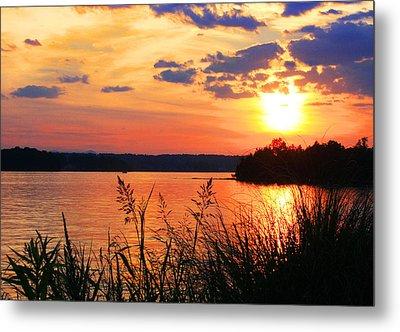 Tall Grass Sunset Smith Mountain Lake Metal Print