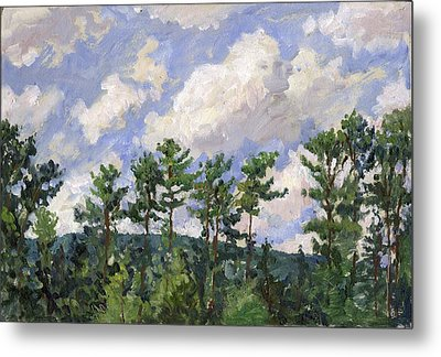 Tall Pines At Tanglewood Metal Print by Thor Wickstrom