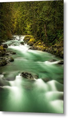 Tamihi Creek Metal Print