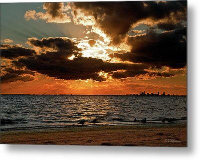 Tampa Bay Sunset Metal Print by Christopher Holmes