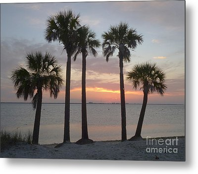 Tampa Bay Sunset Metal Print