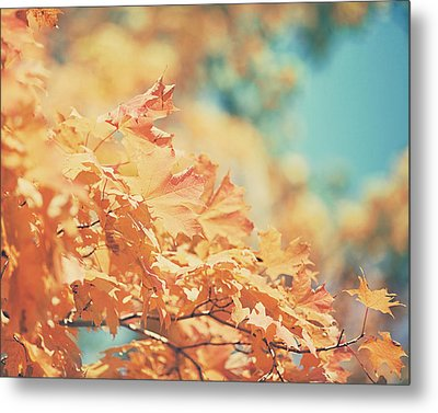Tangerine Leaves And Turquoise Skies Metal Print by Lisa Russo