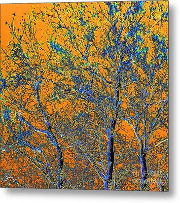 Tangerine Light Metal Print by Ann Johndro-Collins
