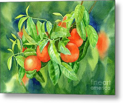 Tangerines With Background 2 Metal Print