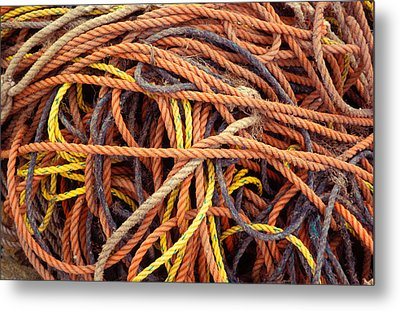 Tangle Metal Print by Brent L Ander