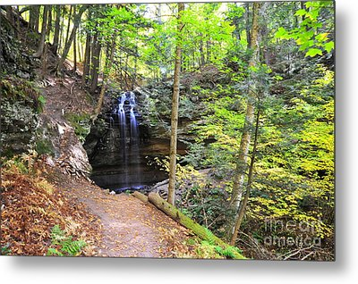 Tannery Falls In Alger County Michigan Metal Print by Terri Gostola