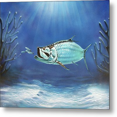 Tarpon Metal Print by Larry Cole