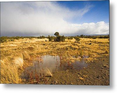 Tasmanian Storm  Metal Print by Mike  Dawson