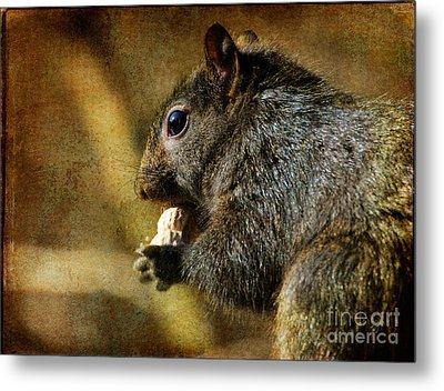 Tasty Snack Metal Print by Lois Bryan