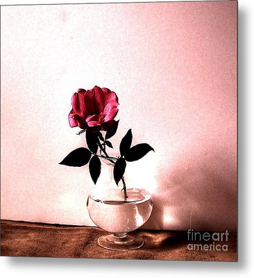 Tea Rose Metal Print by Marsha Heiken