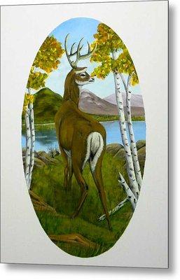 Teddy's Deer Metal Print by Sheri Keith