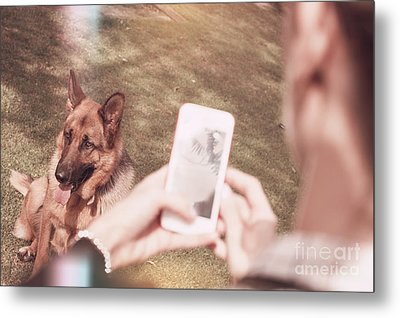 Teen Girl Taking Photo Of Dog With Smartphone Metal Print by Jorgo Photography - Wall Art Gallery