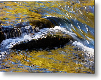 Metal Print featuring the photograph Tellico River - D010004 by Daniel Dempster