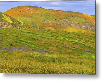 Metal Print featuring the photograph Temblor Range Spring Color by Marc Crumpler