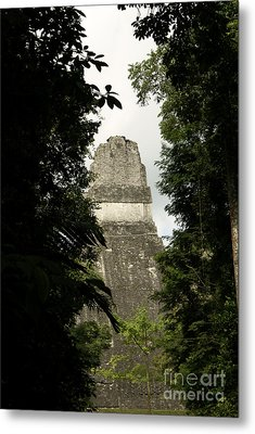 Temple In The Trees Tikal Guatemala Metal Print by John  Mitchell