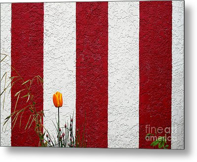 Metal Print featuring the photograph Temple Wall by Ethna Gillespie