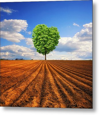 Tender Nature Metal Print by Philippe Sainte-Laudy Photography