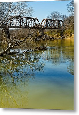 Tennessee Backwater Metal Print by Ron Dubin