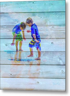 A Summer To Remember Ivb Metal Print by Susan Molnar