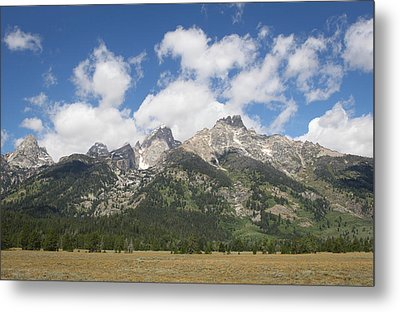 Teton View Metal Print