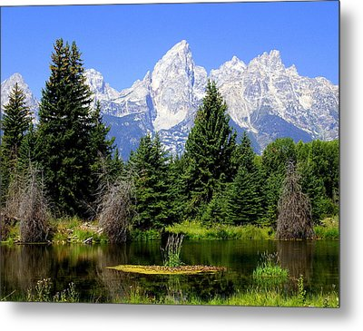 Tetons Metal Print by Marty Koch