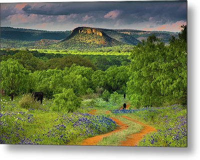 Texas Hill Country Ranch Road Metal Print
