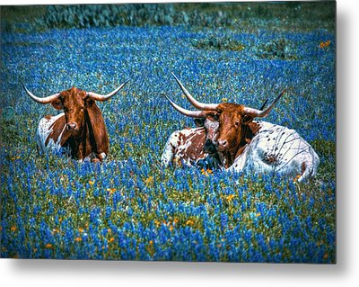 Texas In Blue Metal Print by Linda Unger