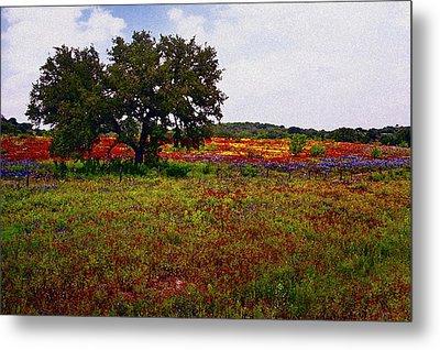 Texas Wildflowers Metal Print by Tamyra Ayles
