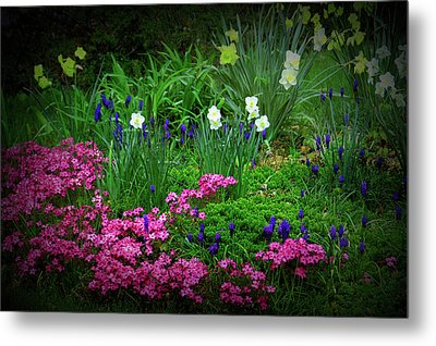 Metal Print featuring the photograph Texture Drama Garden Escape by Aimee L Maher Photography and Art Visit ALMGallerydotcom
