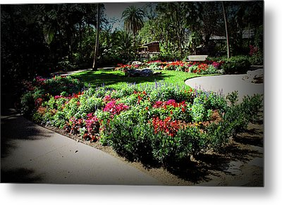 Metal Print featuring the photograph Texture Drama Garden Park by Aimee L Maher Photography and Art Visit ALMGallerydotcom