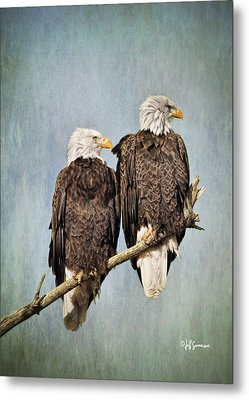 Textured Eagles Metal Print
