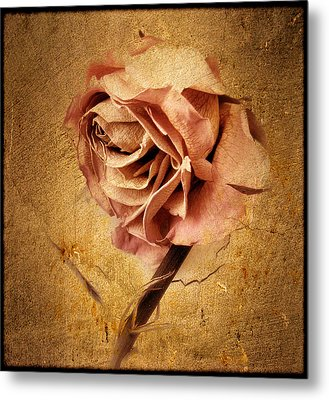 Textured Rose Metal Print by Jessica Jenney