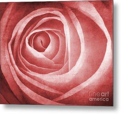 Textured Rose Macro Metal Print by Meirion Matthias
