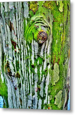 Textures. The Crying Tree Metal Print by Andy Za