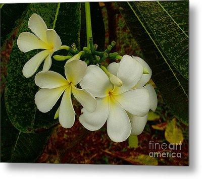 Thai Flowers II Metal Print by Louise Fahy