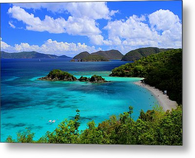 Thank You St. John Usvi Metal Print