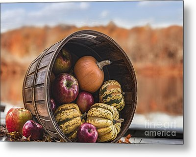 Thanksgiving Harvest Basket Metal Print by Alissa Beth Photography