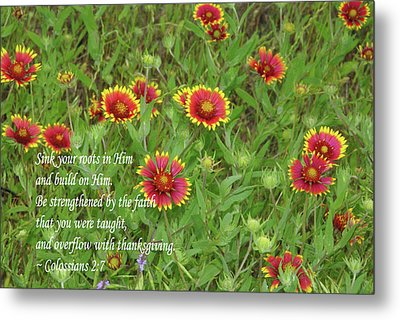 Thanksgiving Metal Print by Robyn Stacey