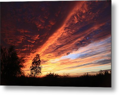 Metal Print featuring the photograph Thanksgiving Sunset by Gary Kaylor
